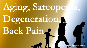 Spengel Chiropractic lessens a lot of back pain and sees a lot of related sarcopenia and back muscle degeneration.