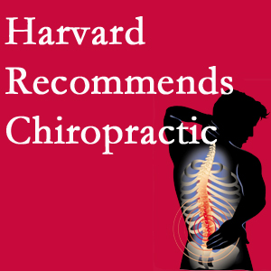 Spengel Chiropractic offers chiropractic care like Harvard recommends.