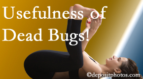Spengel Chiropractic finds dead bugs quite useful in the healing process of McHenry back pain for many chiropractic patients.
